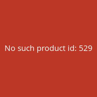 Abziehbild in Gold für NSU Max Schriftzug